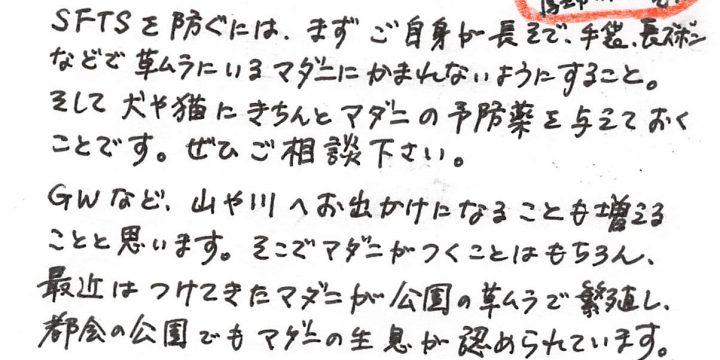 2018年3月度わんちゃんコラム(6歳以下)