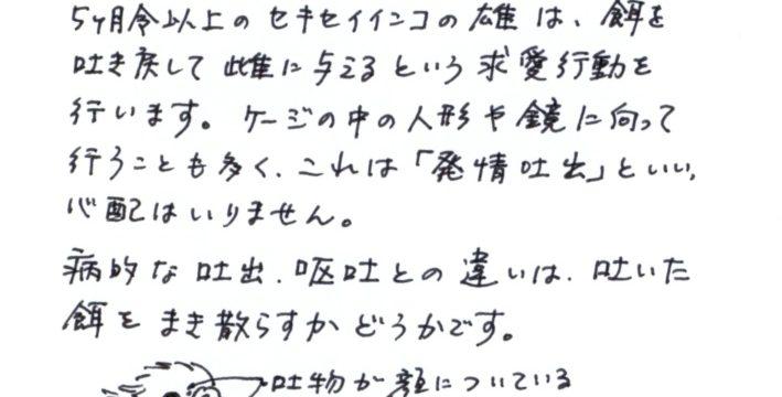 2011年5月度小鳥ちゃんコラム