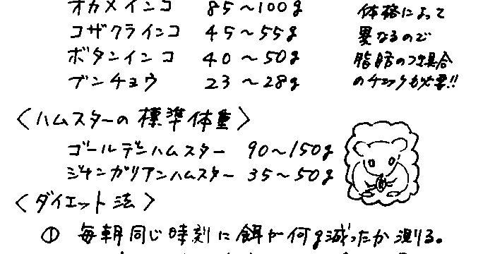 2011年11月度小鳥ちゃんコラム