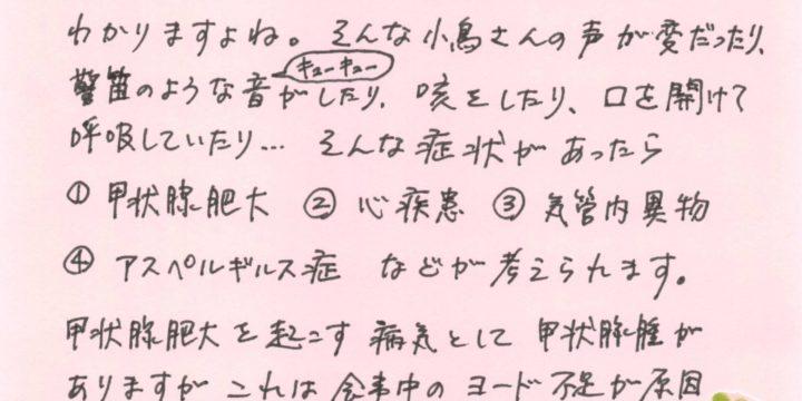 2019年7月度小鳥ちゃんコラム