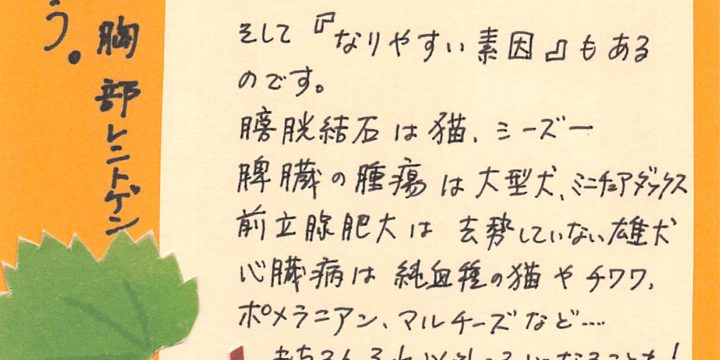 2019年9月度わんちゃん・ねこちゃんコラム(6歳以下)